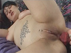A big dog cock in a bitch pussy